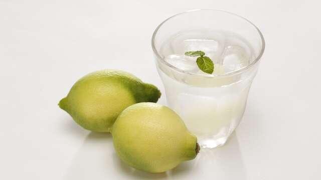 特別栽培夏レモン 高知県産