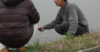 滋賀県産有機玄米