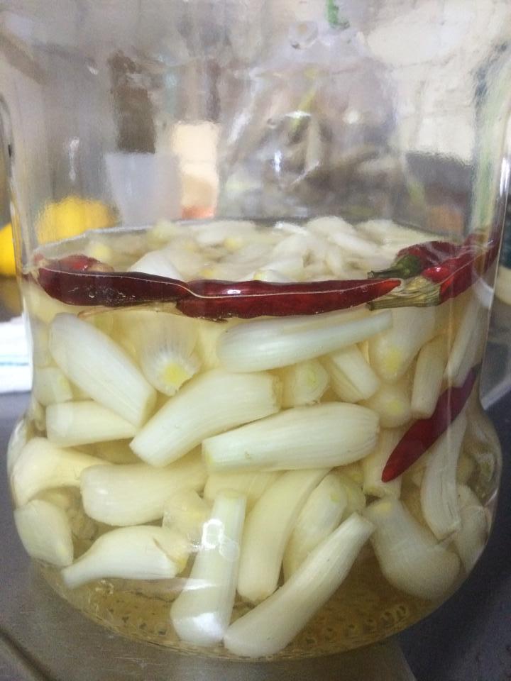 夏の常備菜 らっきょうしごと ~本漬け編~-4