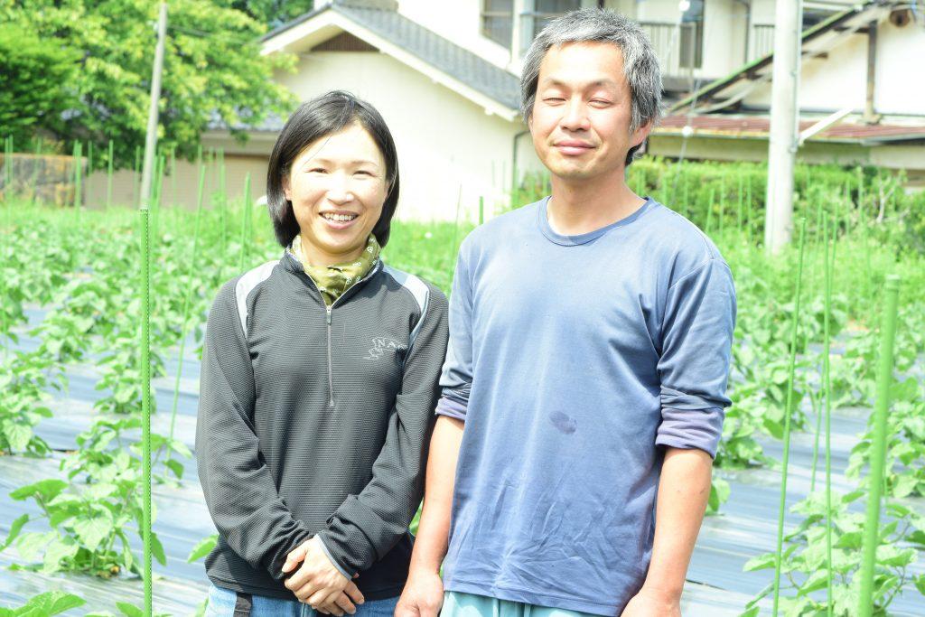 食用ほおずき 長野県産 有機栽培 生産者