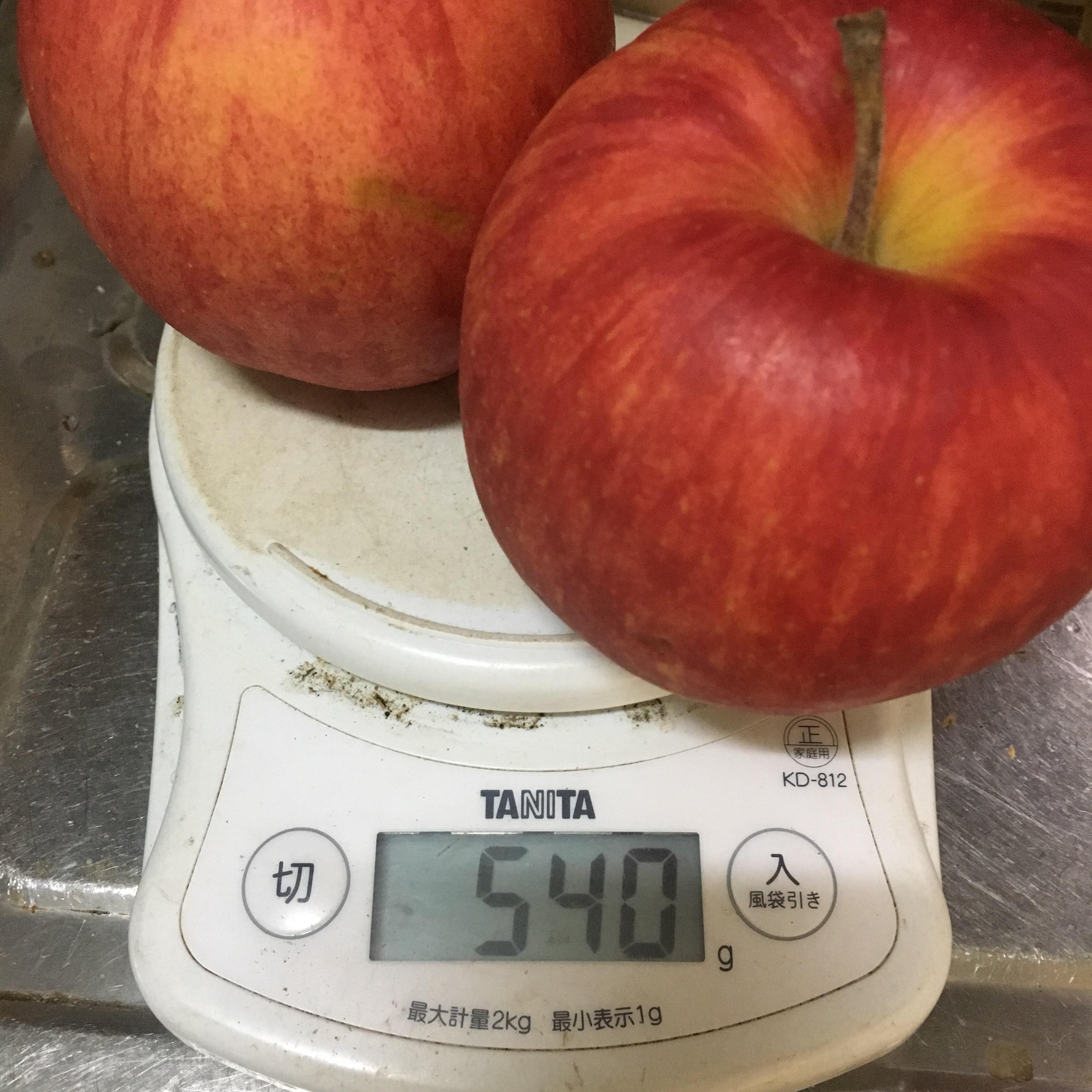 有機栽培りんご 訳あり ジュース用