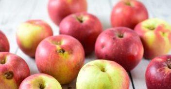 有機栽培リンゴ