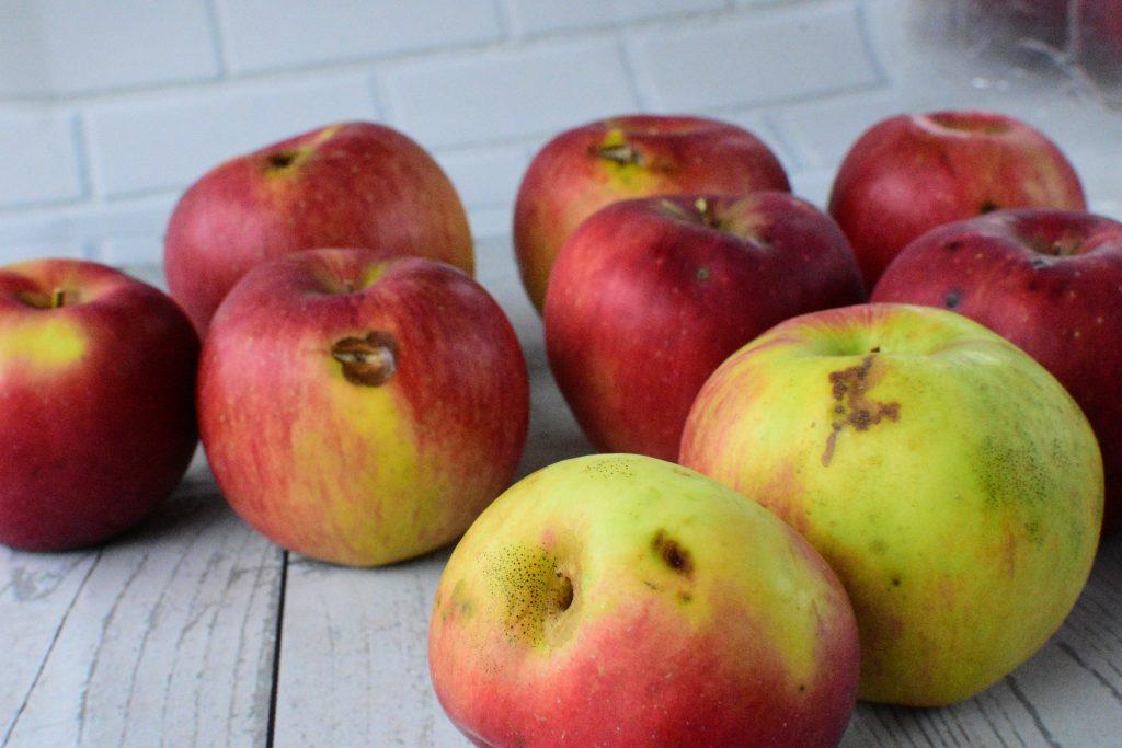 有機栽培りんご 訳あり