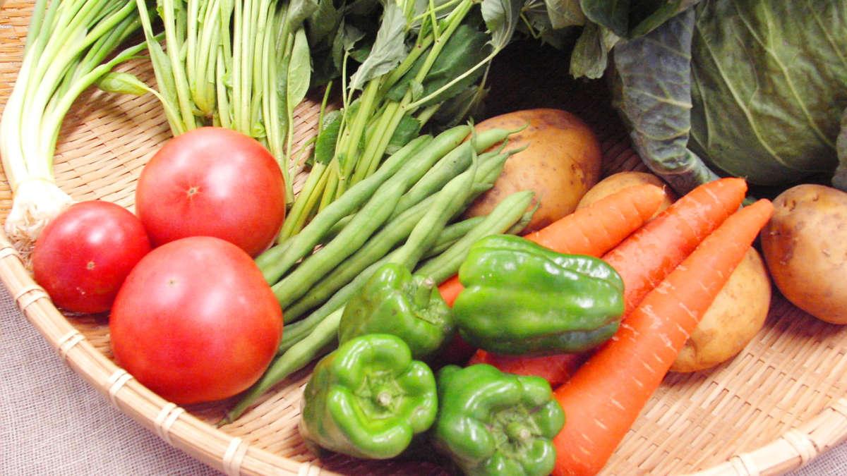 旬の夏野菜の効果で暑い夏を乗り越える
