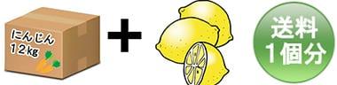 人参12kg+レモンまたはりんご1kg = 1個口