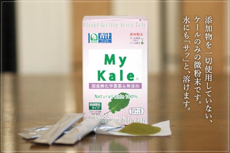国産マイケール スティック(青汁)(3g×30包)