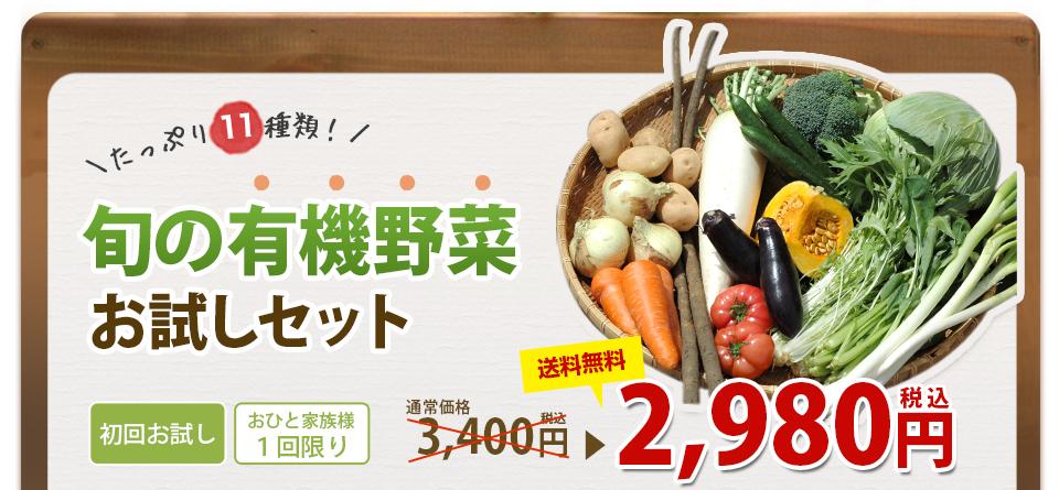 たっぷり11種類! 旬の有機野菜 お試しセット
